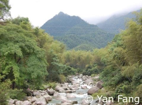 Image-2-landscape_resized